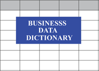 Managing Data-Specific Business Needs Using a Data Dictionary