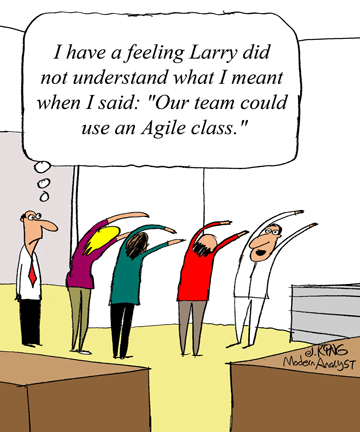 Humor - Cartoon: Get the Right Agile Business Analysis Training