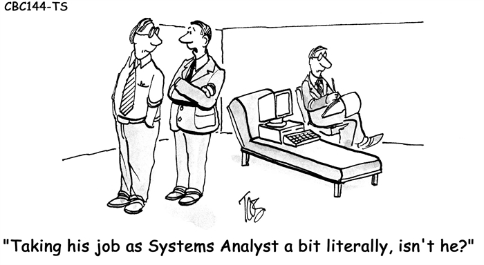 Humor: Job as a Systems Analyst
