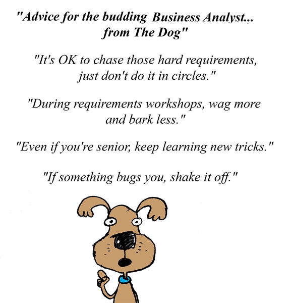 Advice for the budding Business Analyst... from The Dog