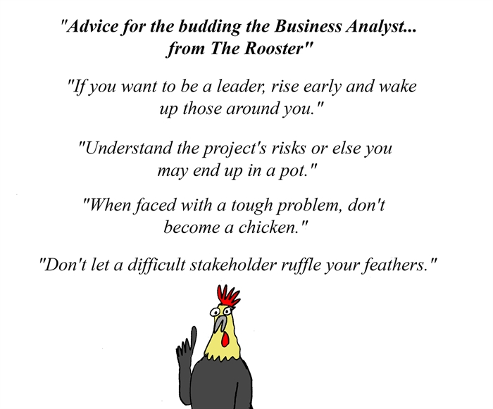 Advice for the budding Business Analyst... from The Rooster