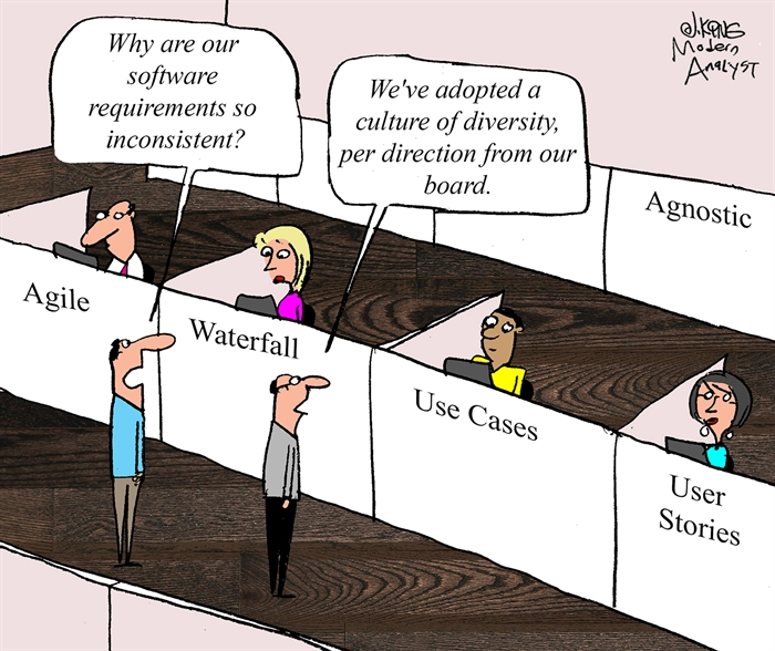 Requirements Methodology Diversity