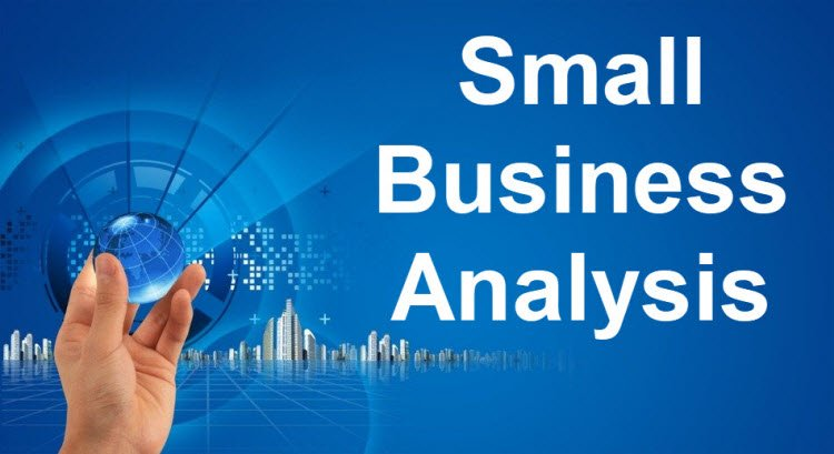 Small Business Analysis